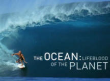 Kelly Slater. The Ocean. Lifeblood of the Planet